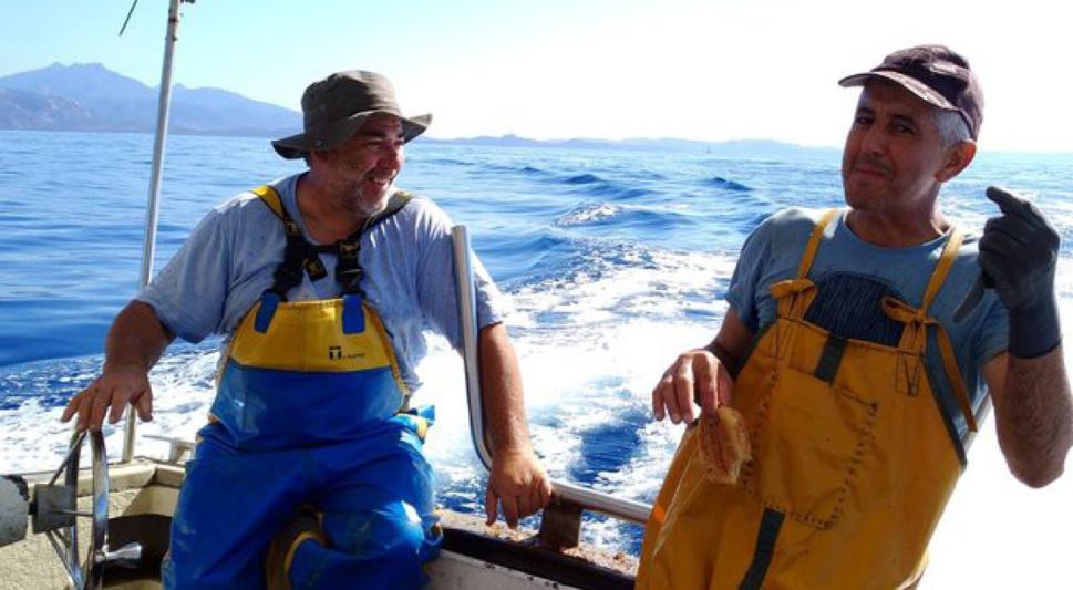 """Marin-pêcheur, un métier de """"passion"""" mais """"difficile"""" (cf. Corse-Matin)"""
