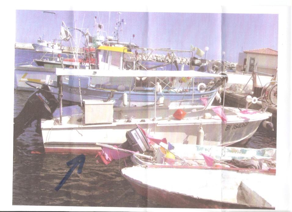 bateau de pêche avec licence