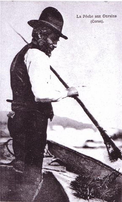 Pêcheur d'Oursin