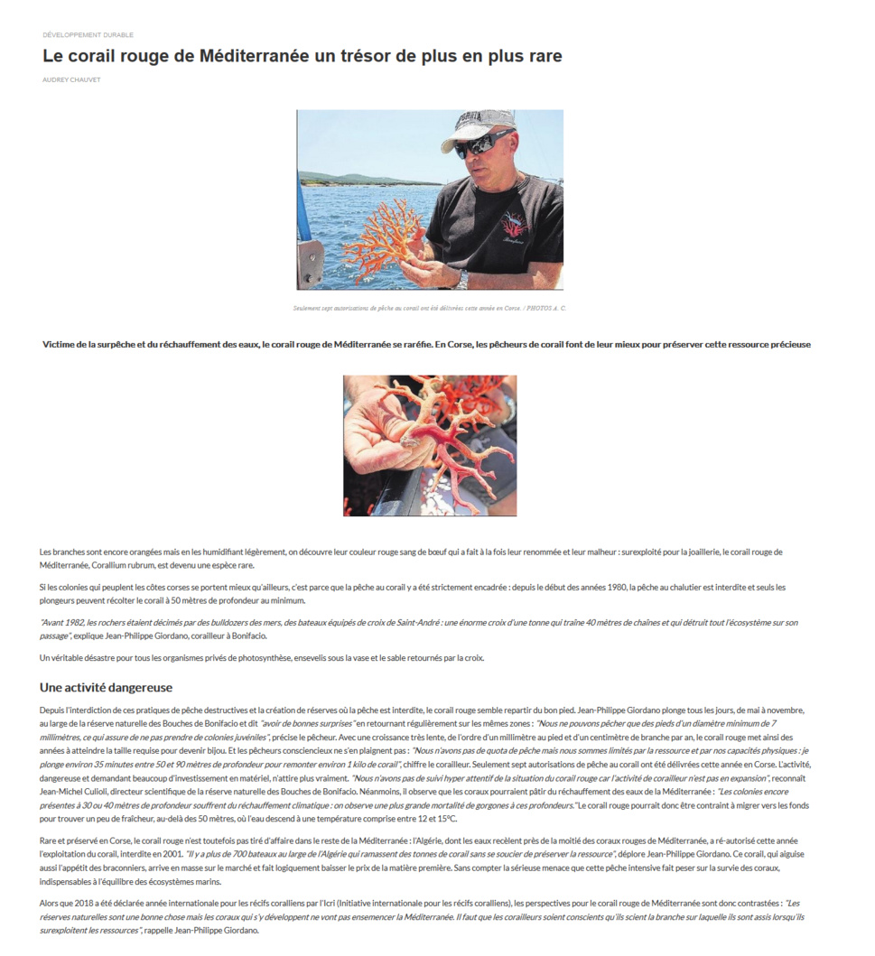 Article relatant l'état du corail rouge de Méditerranée
