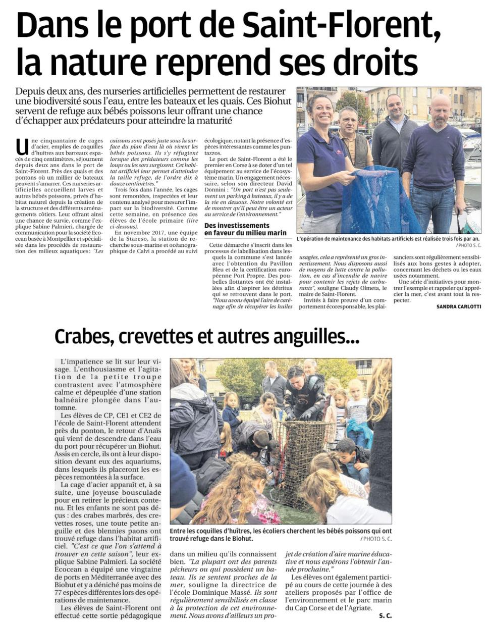 Vérité scientifique : la nature reprend ses droits dans le port de S.Florent