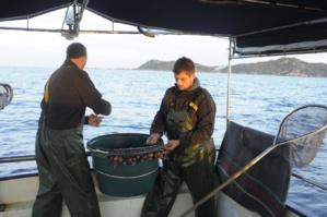 Les différentes techniques de pêche