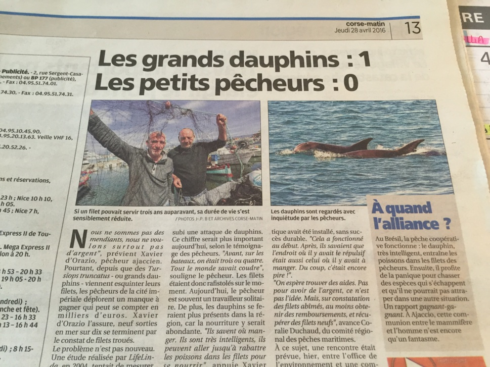 Les grands dauphins - les petits pêcheurs