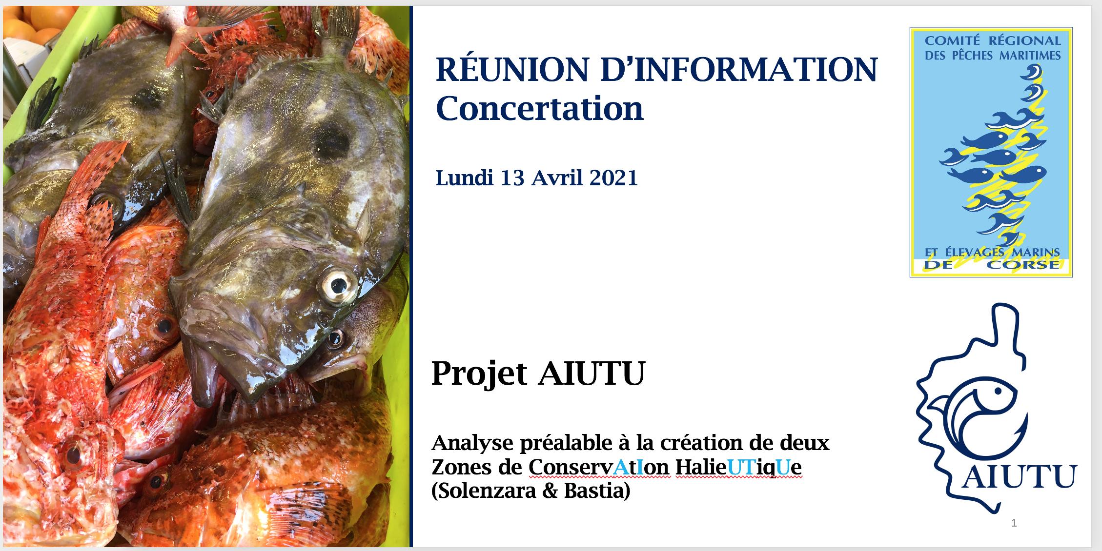 Réunion information AIUTU