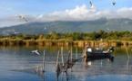 La licence régionale de pêche régionale de l'anguille est obligatoire pour pêcher dans les étangs insulaires.