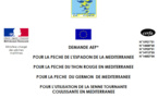 AEP Campagne 2019