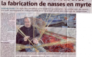 Fabrication de nasses en myrte