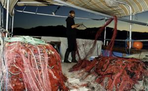 Comment devenir pêcheur professionnel en Corse ?